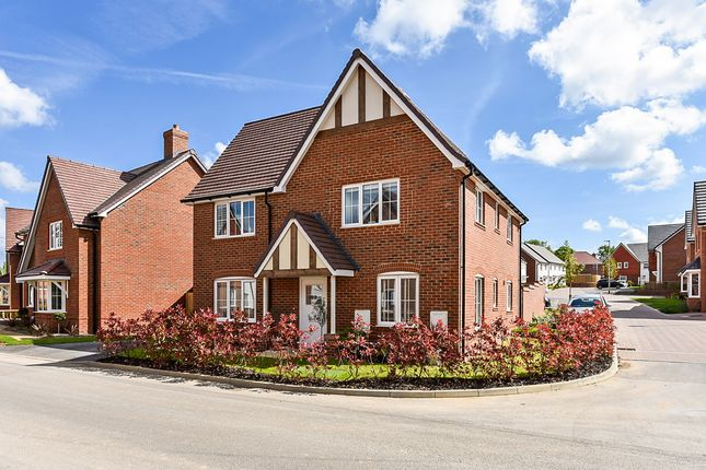 Thumbnail Detached house for sale in Beverley Road, Henfield
