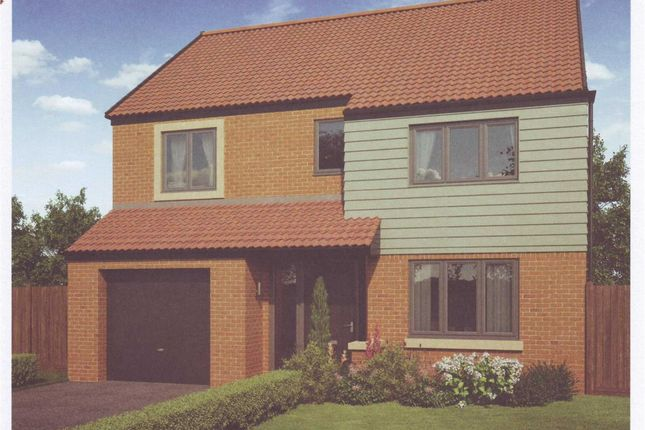 Thumbnail Detached house for sale in Arcot Manor, Cramlington