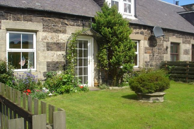 Thumbnail Terraced house for sale in Cupar