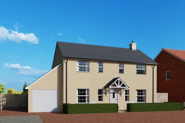 Thumbnail Detached house for sale in Meadow Haze, Broadway, Woodbury, Devon