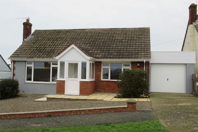 Thumbnail Detached bungalow to rent in 11 Bryn Elfed, Fishguard, Pembrokeshire