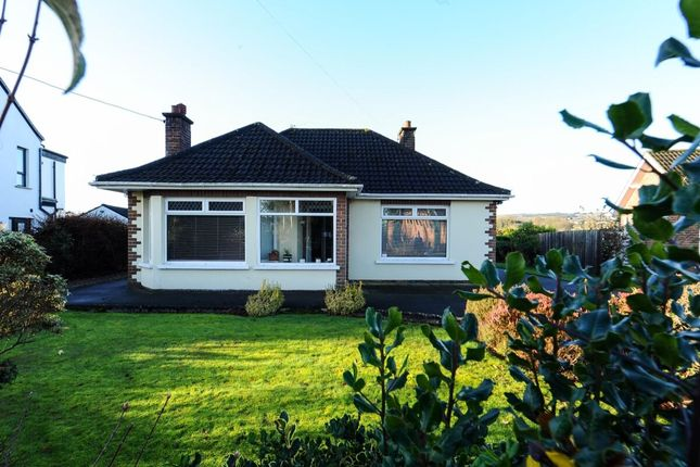 Thumbnail Bungalow for sale in Mosside Road, Dunmurry, Belfast