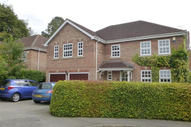Thumbnail Detached house to rent in The Grove, York