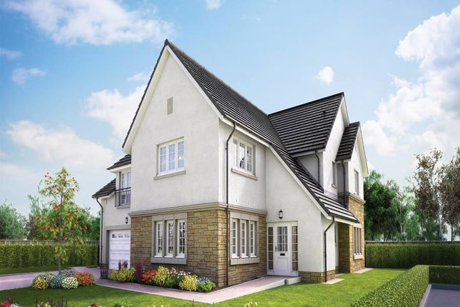 "Thumbnail Detached house for sale in ""The Lowther"" at Lowrie Gait, South Queensferry"