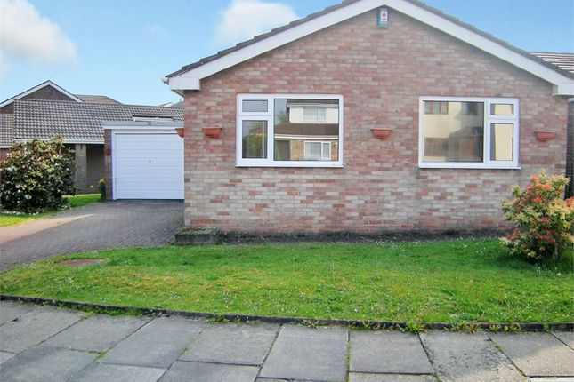 Thumbnail Detached bungalow to rent in Bryn Rhosyn, Radyr, Cardiff