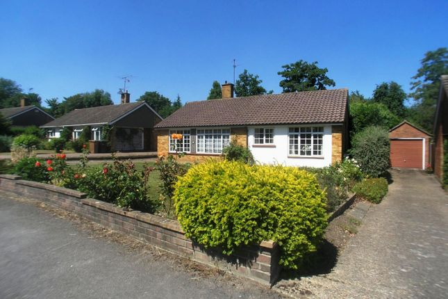Thumbnail Bungalow to rent in Tormead Road, Guildford