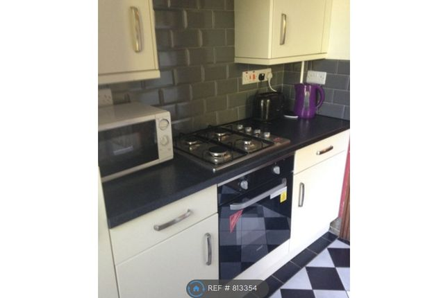Thumbnail Terraced house to rent in Roebuck Road, Sheffield