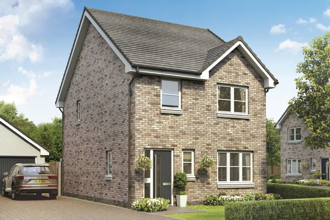 Thumbnail Detached house for sale in Clare Crescent, Larkhall