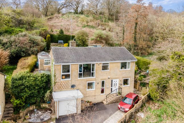 Thumbnail Detached house for sale in Orchard Close, East Chinnock