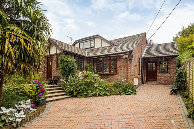 Thumbnail Bungalow for sale in Kings Hill, Beech, Hampshire