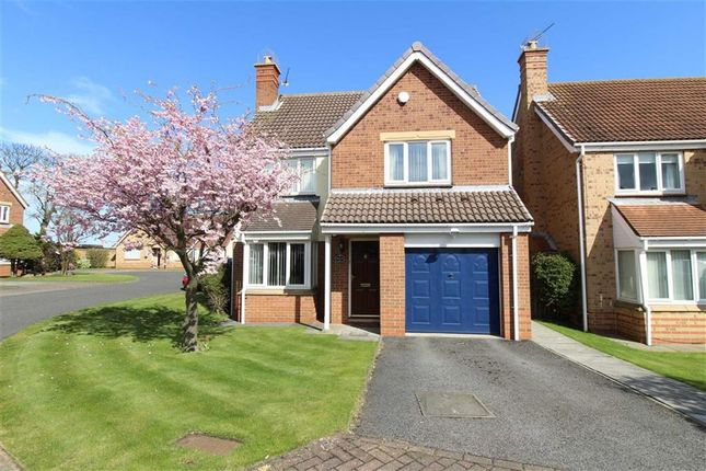 Thumbnail Detached house for sale in Northlands, North Shields