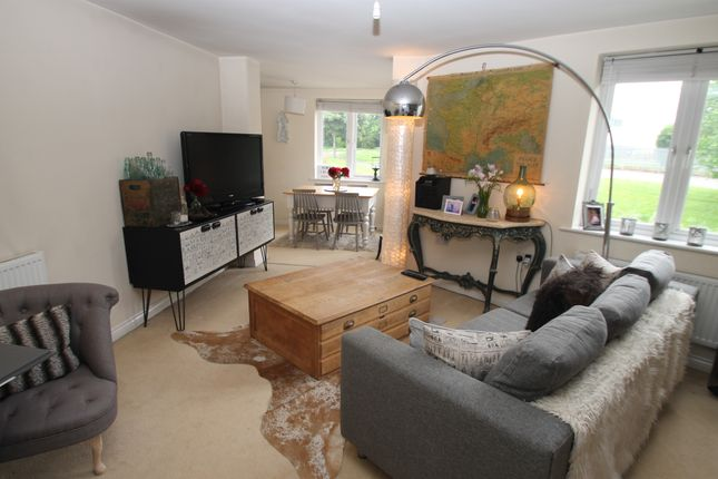 Thumbnail Flat to rent in Clittaford Road, Southway