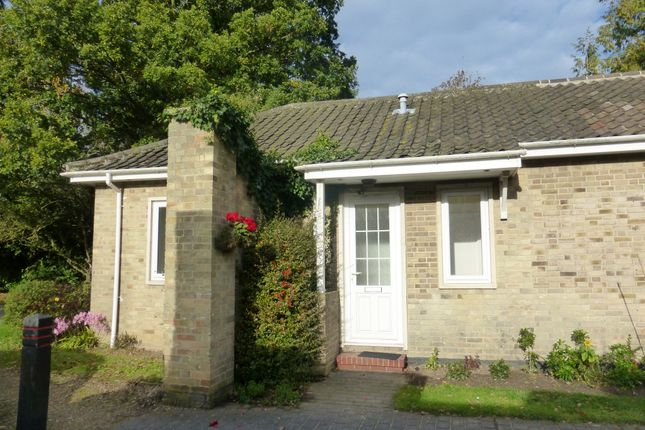 Thumbnail Terraced bungalow for sale in Alexander Court, Keswick, Norwich