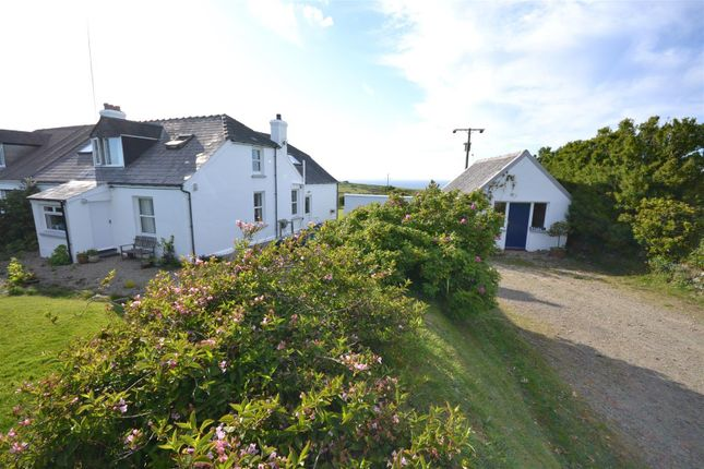 Thumbnail Semi-detached house to rent in Berea, Haverfordwest