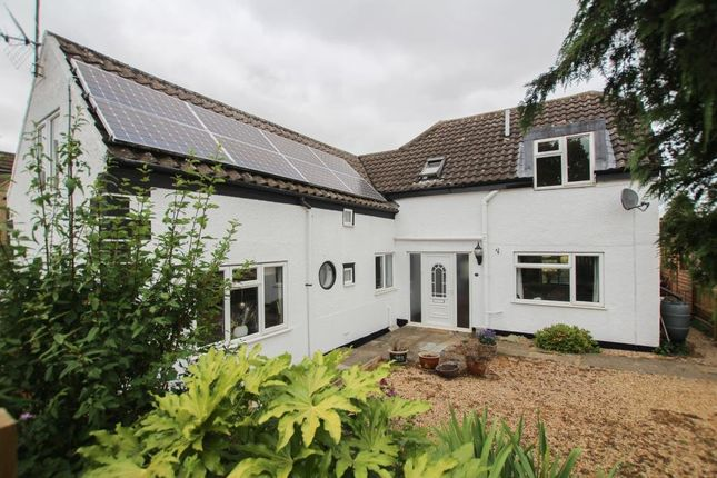 Thumbnail Detached house for sale in Wilburton Road, Stretham, Ely