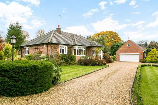 Thumbnail Detached bungalow for sale in Nags Head Lane, Great Missenden