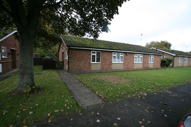 Thumbnail Semi-detached bungalow to rent in Thames Road, Spalding, Lincolnshire