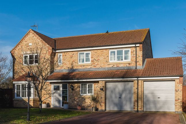 Thumbnail Detached house for sale in Halesowen Place, Eye, Peterborough