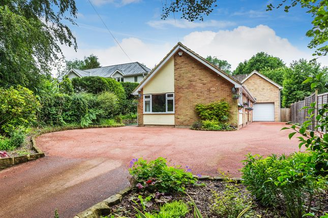 Detached house for sale in Hollow Lane, Dormansland, Lingfield