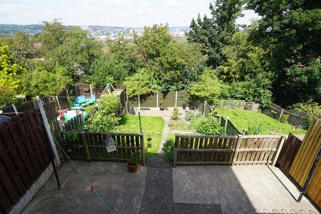 Back Garden of Myrtle Road, Sheffield S2
