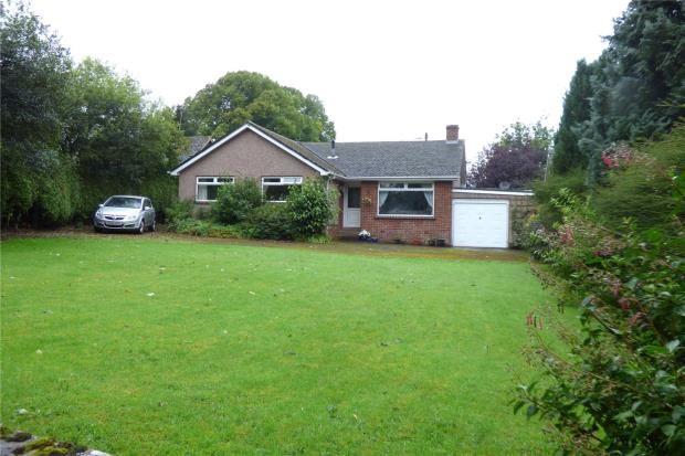 Thumbnail Detached bungalow for sale in Beacon View, Ellonby, Penrith, Cumbria