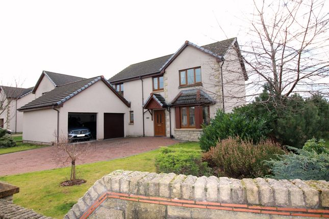 Thumbnail Detached house for sale in Willow Place, Blairgowrie