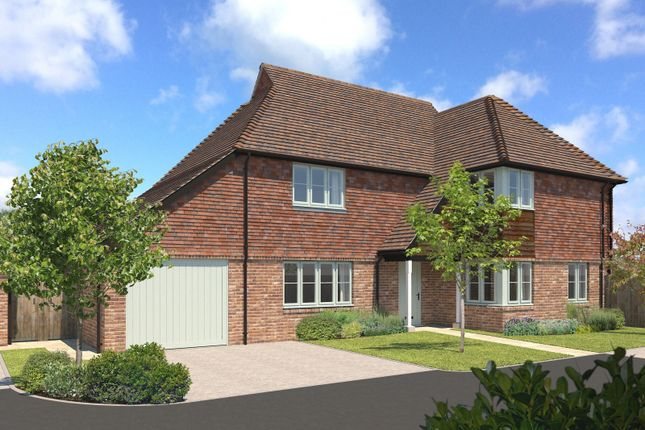 Thumbnail Detached house for sale in Frenchmans Heights, Borough Hill, Petersfield