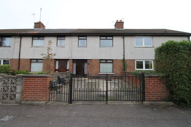 Thumbnail Terraced house to rent in Windsor Avenue, Lisburn