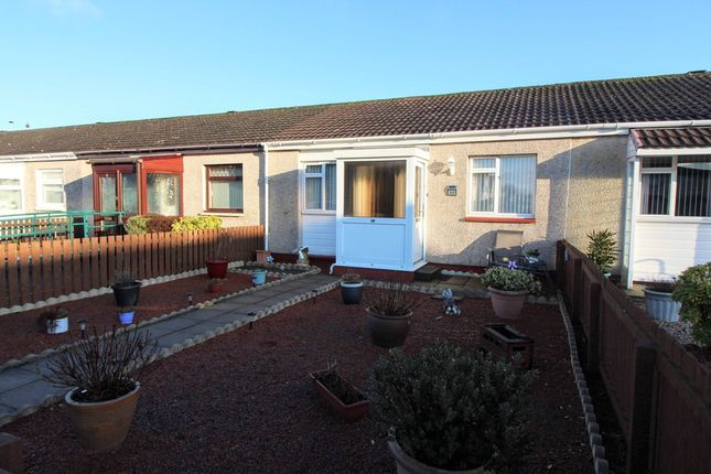Thumbnail Terraced bungalow for sale in Mossbank, Prestwick