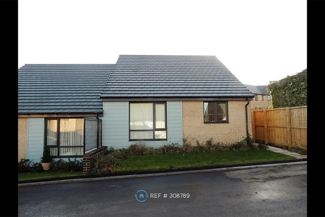Thumbnail Bungalow to rent in Rocksand Drive, Edlington, Doncaster