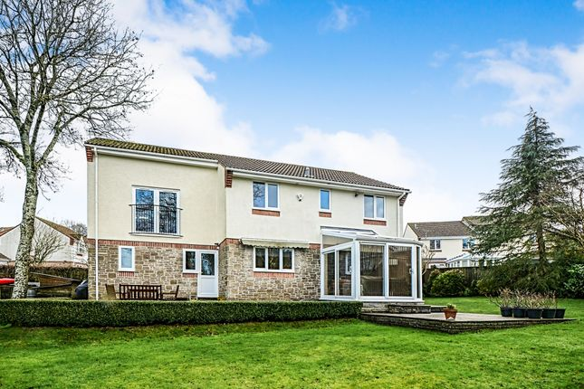 Thumbnail Detached house for sale in Chestnut Drive, Newton Abbot
