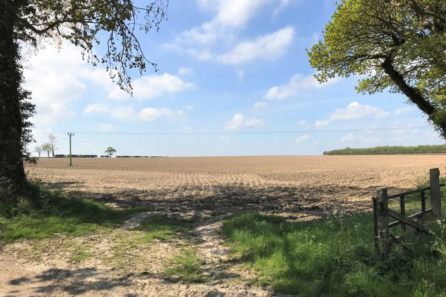 Thumbnail Land for sale in Hall Road, Hemsby, Great Yarmouth