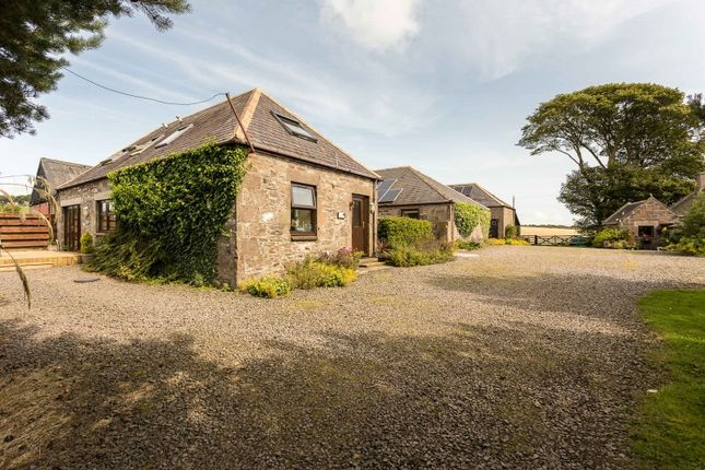 Thumbnail Farmhouse for sale in Johnshaven, Montrose, Angus