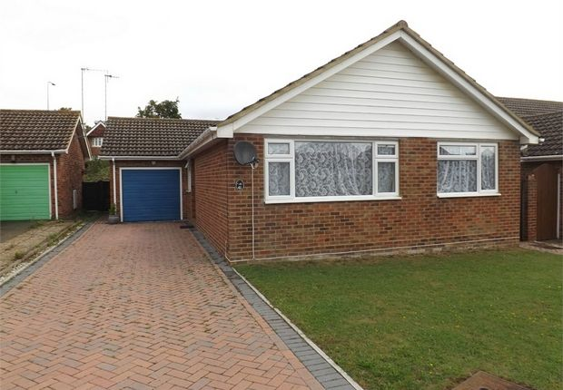 Thumbnail Detached bungalow to rent in College Road, Bexhill-On-Sea, East Sussex