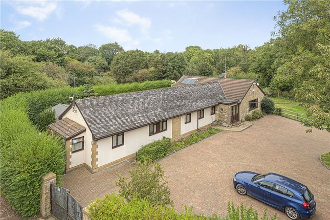 Thumbnail Detached bungalow for sale in Ham Hill, Stoke-Sub-Hamdon, Somerset