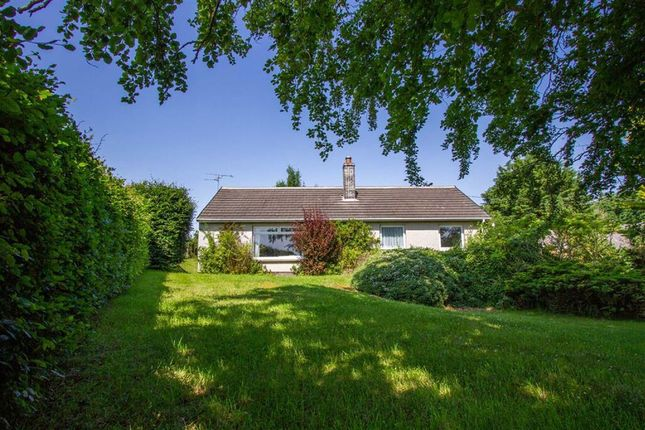 Thumbnail Detached bungalow for sale in Berwick-Upon-Tweed, Northumberland