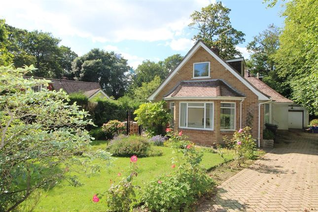 Thumbnail Detached house to rent in Rothesay Drive, Highcliffe, Christchurch, Dorset