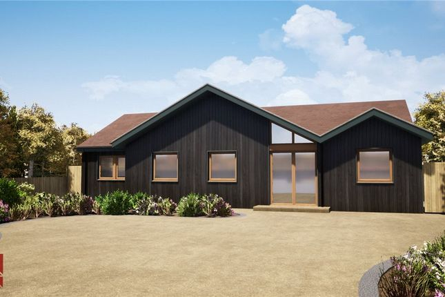 Thumbnail Detached bungalow for sale in New Cross, Longburton, Sherborne