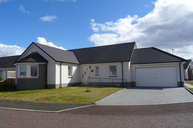 4 bed bungalow to rent in Destiny Drive, Scone, Perth PH2