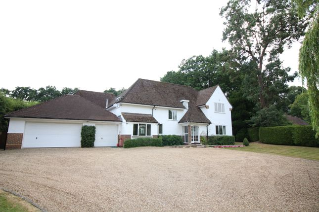 Thumbnail Detached house to rent in Priory Road, Sunningdale, Ascot