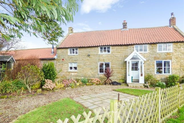 Thumbnail Detached house for sale in Loftus, Saltburn-By-The-Sea, North Yorkshire