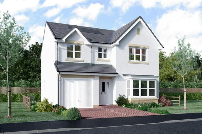 "Thumbnail Detached house for sale in ""Murray"" at Dochart Grove, Glasgow"