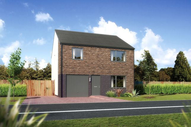 "Thumbnail Detached house for sale in ""Denewood"" at Carron Den Road, Stonehaven"
