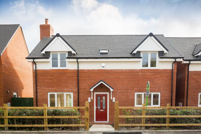 Thumbnail Detached house for sale in Willow Bank Meadows, Hengoed, Oswestry