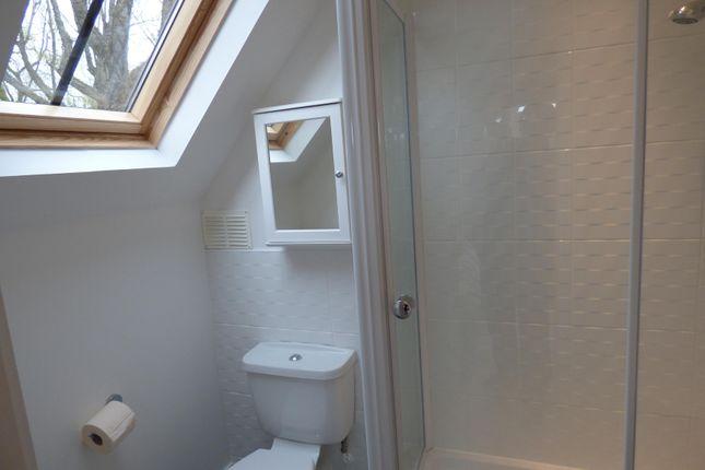 Guest Bedroom En-Suite Shower Room