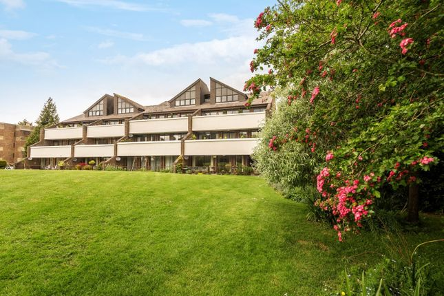 Thumbnail Flat for sale in Tollhouse Close, Chichester