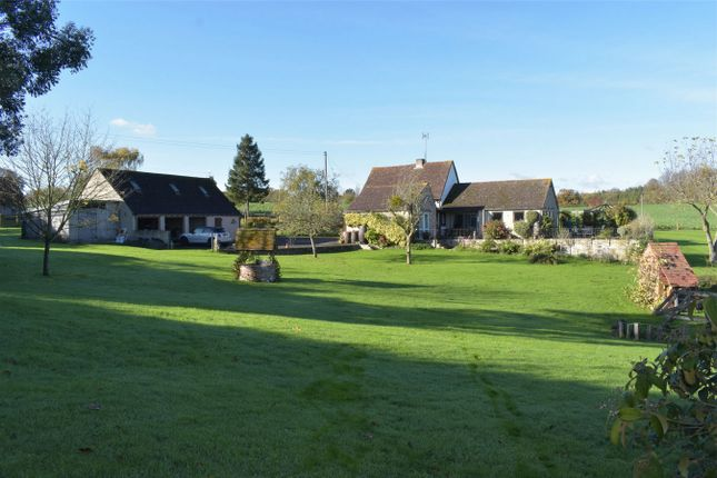 Thumbnail Detached house for sale in Bushley Green, Bushley, Tewkesbury