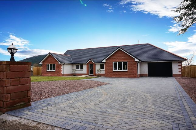 Thumbnail Detached bungalow for sale in Beeswing, Dumfries