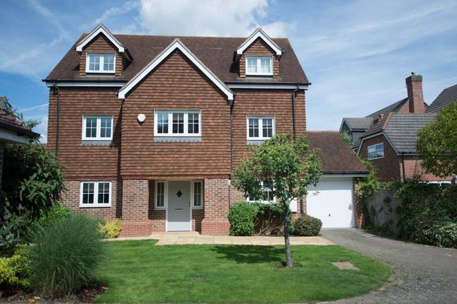 Thumbnail Detached house for sale in Charlotte Drive, West Malling