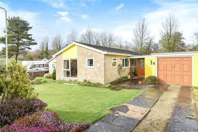 Thumbnail Detached bungalow for sale in Yarn Barton, Broadwindsor, Beaminster, Dorset